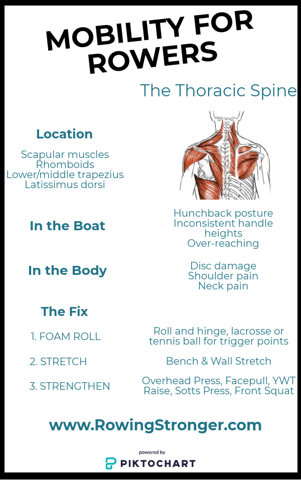 Thoracic Spine Mobility for Rowers - Rowing Stronger